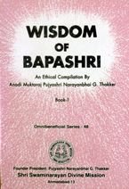 48 Wisdom of Bapashri (Book 1)
